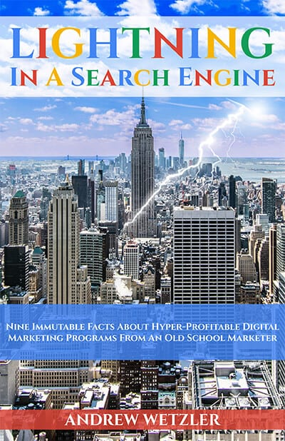 Lightning In A Search Engine: Nine Immutable Facts About Hyper-Profitable Digital Marketing Programs From An Old School Marketer Book Cover