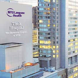 Increase In Organic Website Results Achieved for NYU Langone Health