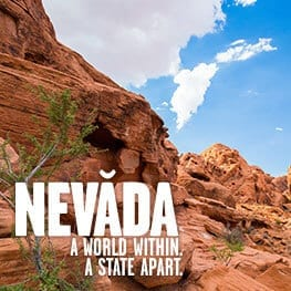Nevada Commission on Tourism – Exceeded The Goal of 20,000 Non-paid Visitors per-month